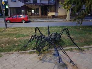 zukiwtrasie.pl-ALBANIA